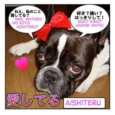 愛しています!( = Aishite imasu ) I love you! + Love related