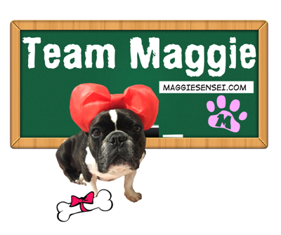 teammaggiebrighterpic