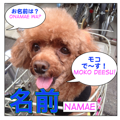 名前 (=namae) : Name Related Lesson