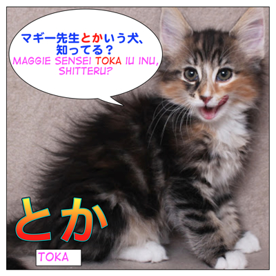 How to use とか (=toka)