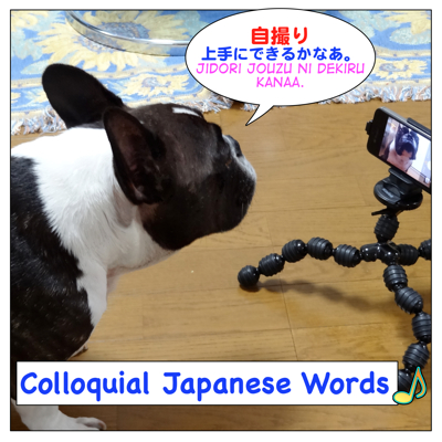 Colloquial Japanese words (Twitter follow up lesson)